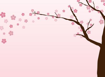 Cherry-Blossom-Branch.png